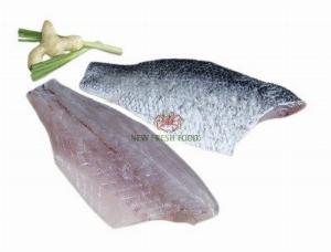 Cá Chẽm Fillet - New Fresh Foods