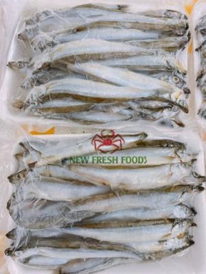 Cá Trứng Nauy - New Fresh Foods