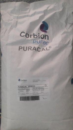 Calcium Lactate - Hà Lan