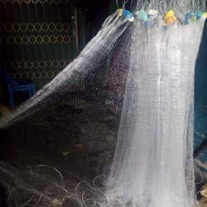 Lưới Giăng Cá Lòng Tong Mùa Dịch