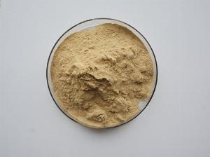 Bán enzyme Lumbrokinase hoạt lực cao.