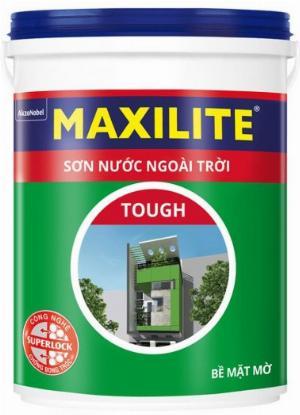 Đại lí cấp 1 Sơn ngoại thất Maxilite tại TPHCM