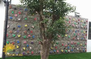 2021-07-24 13:27:49  5  Tường leo núi trẻ em 100,000