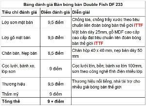 Bàn Bóng Bàn chính hãng Double Fish DF233