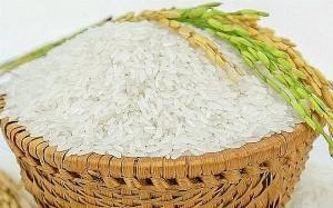 Gạo ST15 dẽo thơm vân chuyễn nhanh mùa dich