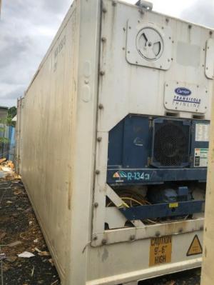 Container bảo quản sầu riêng đông lạnh