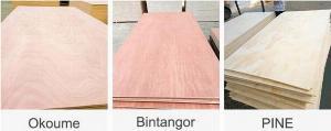 Ván dán nội thất  Mặt Okoume - Bintangor - Pine plywood.
