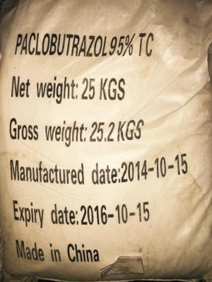 Paclobutrazol 95%WP (Paclo 95%) - Trung Quốc