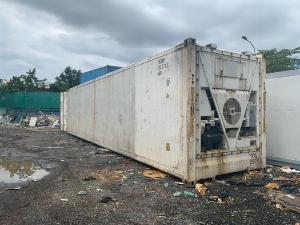 Container lạnh 40feet trữ đông sầu riêng