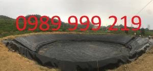 Màng hdpe 0.3mm khỏ 5x20m cuộn 100m2 lót biogas