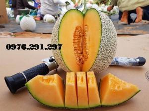 Khúc xạ kế đo ngọt và độ cồn của trái cây