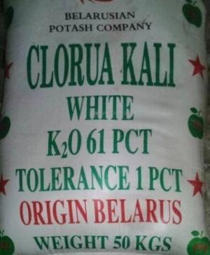 Potassium Chloride KCl (Kali Clorua) - Belarus