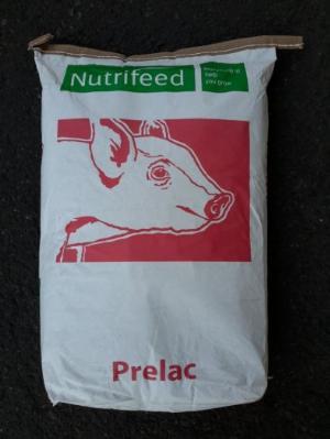 Prelac – Hà Lan