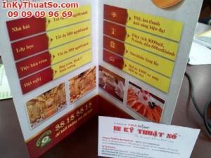In brochure giá rẻ từ in offset
