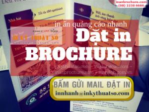 In brochure trên chất liệu giấy Coucher định lượng đa dạng