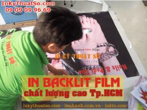 Dịch vụ in backlit film chất lượng cao