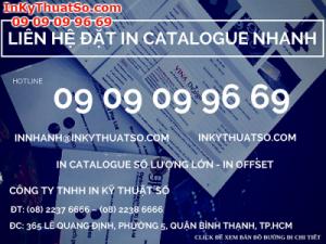 In catalogue tại Tp.HCM với giá thành cạnh tranh nhất
