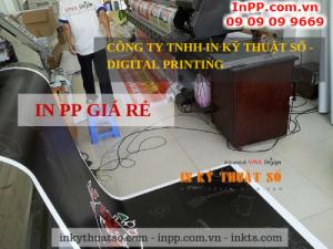 Các loại mực in PP giá rẻ