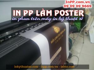 In PP giá rẻ làm poster quảng cáo Nấm Linh Chi