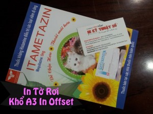 In tờ rơi khổ A3 in offset