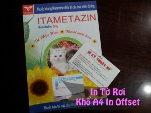 In tờ rơi khổ A4 in offset
