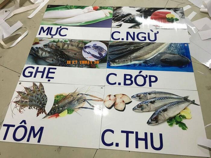 In PP dán formex giới thiệu các loại cá được bán trong quầy hàng tươi sống tại siêu thị