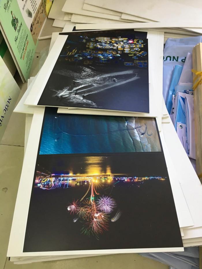 Và đây, rất nhiều tranh in trang trí được thực hiện từ in PP bồi formex đấy!