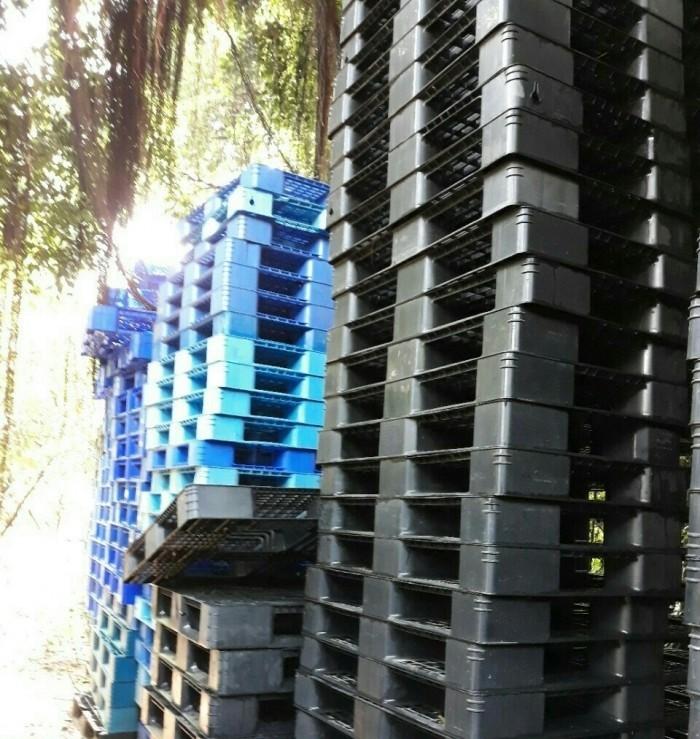 Báo Giá Pallet Nhựa Tại Bình Dương Nhanh Nhất