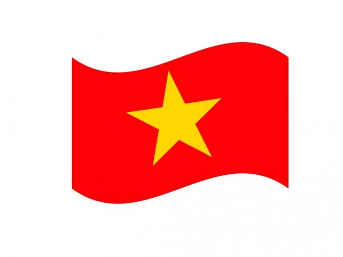 Mẫu in sticker miếng dán má hình cờ Việt Nam