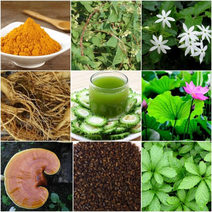 Thành phần của trà giảm cân Golean Detox`