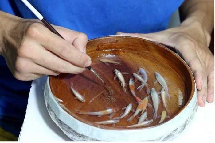 Nơi bán keo epoxy resin trong và đóng rắn chất lượng, giá tốt, số lượng lớn
