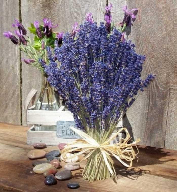 Quà tặng 20/10 ý nghĩa: hoa khô Lavender