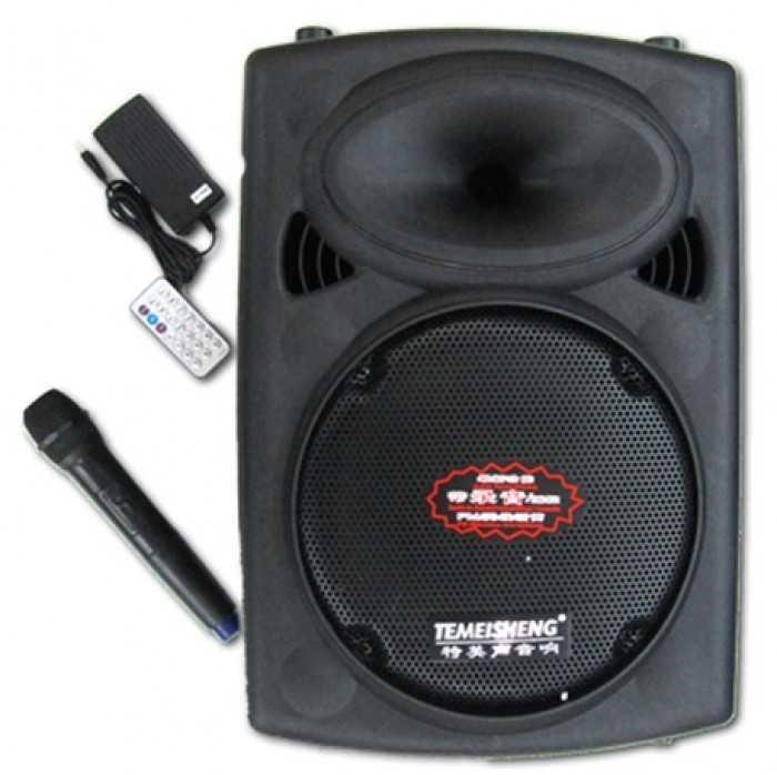 Các loại loa karaoke chuyên nghiệp được dùng phổ biến