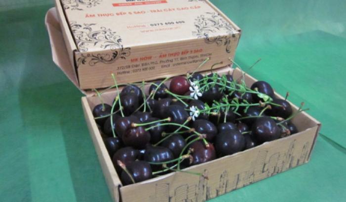 Hộp quà trái cây 1 triệu trở lên từ MKnow