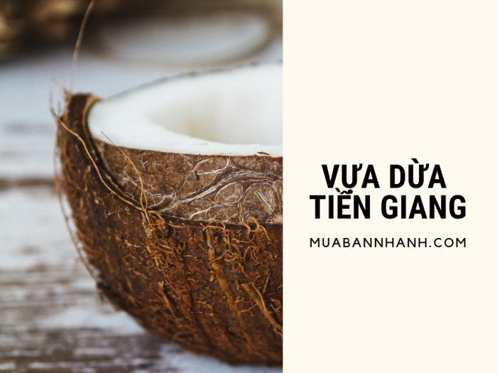Vựa dừa Tiền Giang - dừa tươi giá sỉ từ chợ đầu mối bán dừa tươi trên MuaBanNhanh