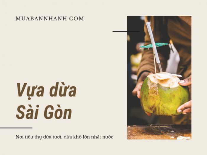 Vựa dừa ở Sài Gòn - Vựa dừa Bến Tre tại các chợ đầu mối bán dừa có thông tin lấy sỉ trên MuaBanNhanh
