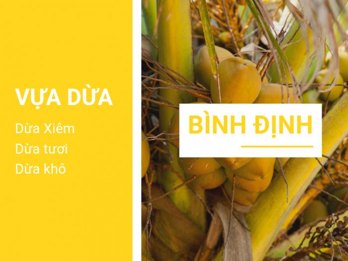 Vựa dừa Bình Định - Mối sỉ dừa Bình Định, giá dừa xiêm, dừa tươi, dừa khô Bình Định - vựa dừa lớn nhất miền Trung trên MuaBanNhanh