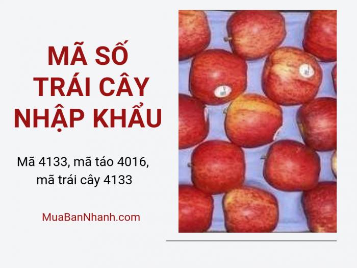 Về trái cây nhập khẩu mã số 4: mã số trái cây 4133, mã táo 4133, mã táo 4016, táo mỹ mã 4016