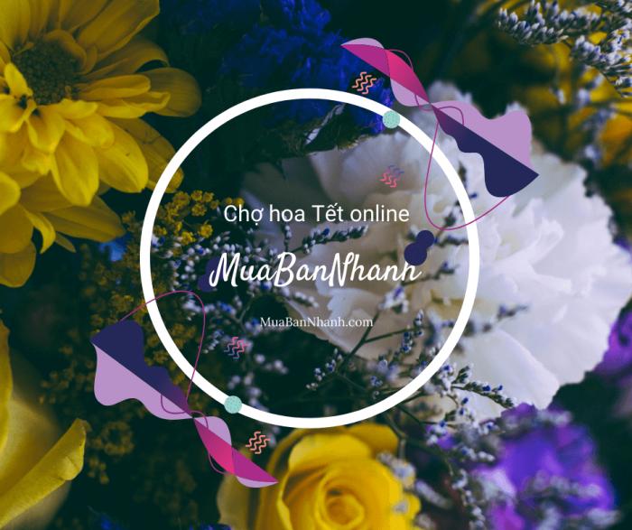 Chợ hoa Tết online MuaBanNhanh - Top 20 loài hoa chơi Tết, chưng cắm phòng khách, bàn thờ
