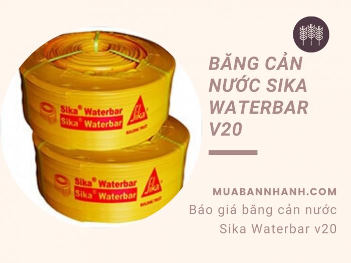 Báo giá băng cản nước Sika Waterbar v20 - Sử dụng cho công trình thủy lợi, đê điều, tầng hầm chung cư