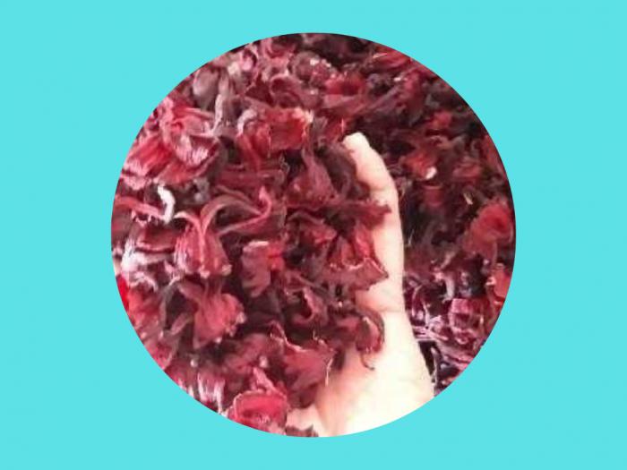 Sỉ Atiso đỏ khô