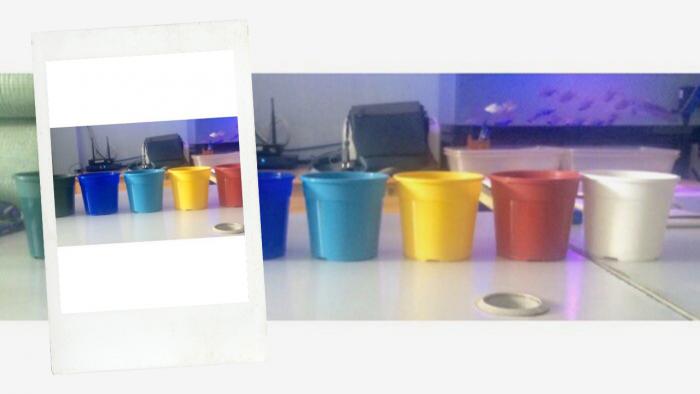 Công ty THAKICO - Sản xuất các loại Chậu Kiểng các loại