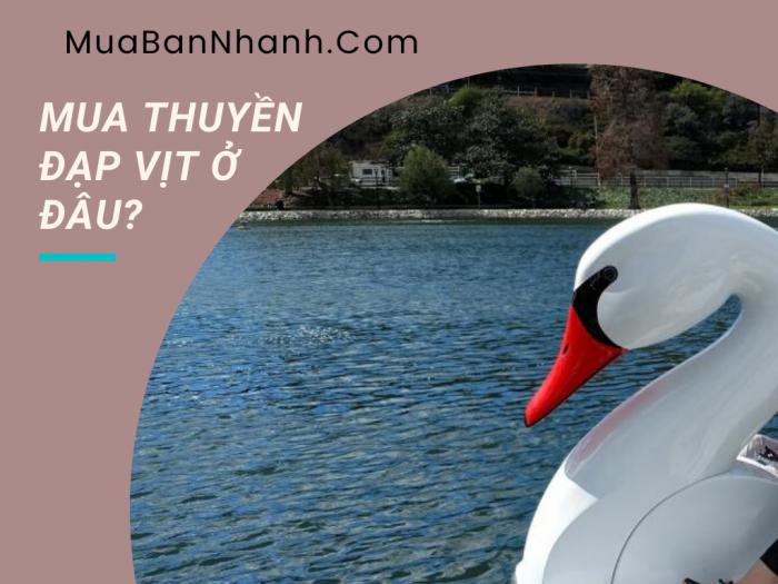 Mua thuyền đạp vịt ở đâu? bao nhiêu tiền? Nơi mua bán, thanh lý, cung cấp thuyền đạp vịt cũ mới tại Hà Nội