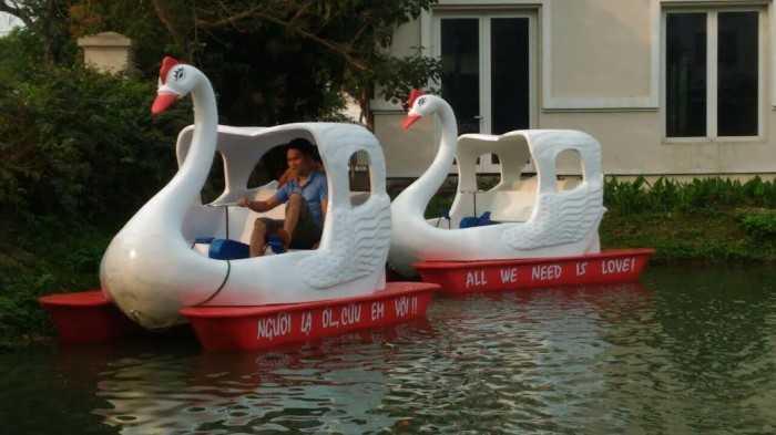 Mua thuyền thiên nga ở đâu - MuaBanNhanh