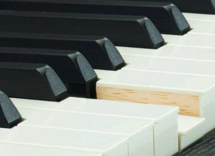 bàn phím đàn piano điện mang lại cảm nhận chân thật