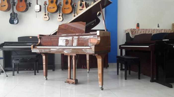 dịch vụ cho thuê piano