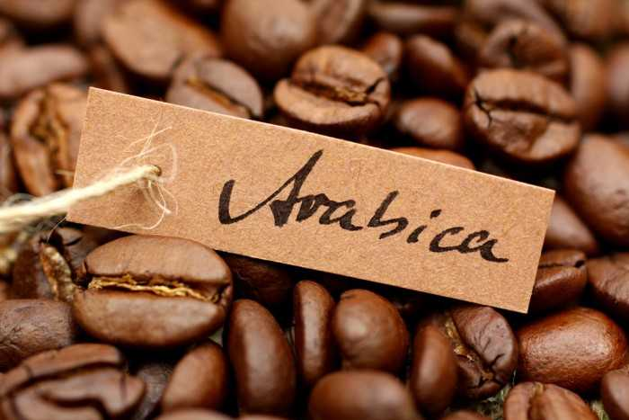 hạt cà phê Việt Nam