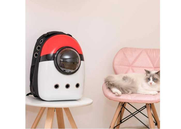 Lấy sỉ cho Pet shop làm thương hiệu, túi vận chuyển cho mèo số lượng lớn