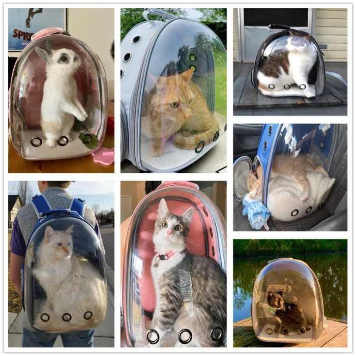 Đối tác cung cấp sỉ nguồn hàng balo túi vận chuyển thú cưng - Nguồn hàng balo túi xách giá gốc tại TPHCM