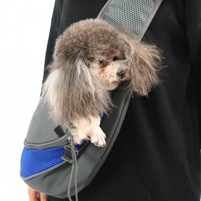 Balo, túi xách vận chuyển thú cưng hàng đặt sản xuất theo yêu cầu, số lượng lớn